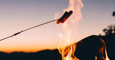 20 Quick and easy campfire recipes