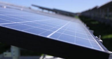 Contractor secured for Palau solar project