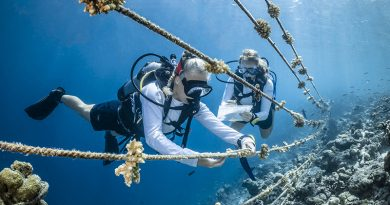 World Ocean Day photo competition entries close May 3rd 2020