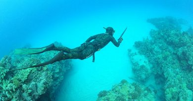 Q & A with Darren Shields – 6 times New Zealand spearfishing champion