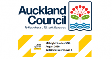 Moving to Level 2: Inspections and Building Services Akl Council