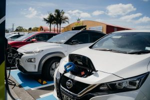 Advice shows Kiwis will embrace electric vehicles